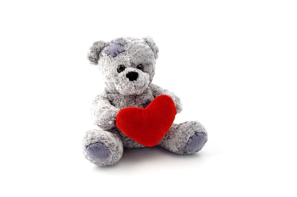 teddy-1641_960_720